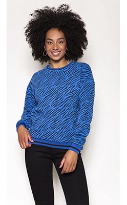 Carraig-Donn---KELLY-&-GRACE-WEEKEND-Tiger-Print-Sweater-in-Blue